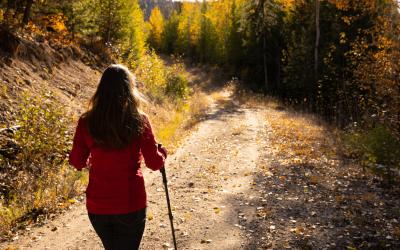 Fall Checklist for Health & Wellness